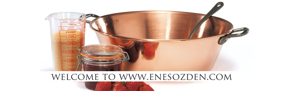 welcome-to-enesozdencom